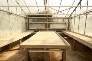 Gewächshaus-Installation, Raum 4